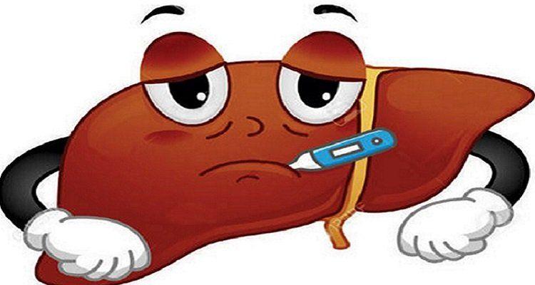 Suy giảm chức năng gan (Nguồn ảnh: Internet)