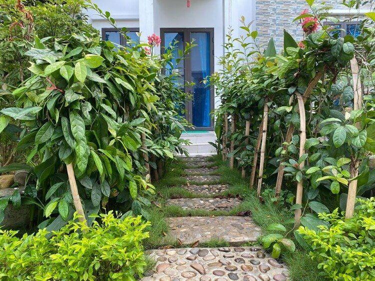Không gian sống xanh với nhiều cây thuốc, dược liệu ở Đại Phú An.