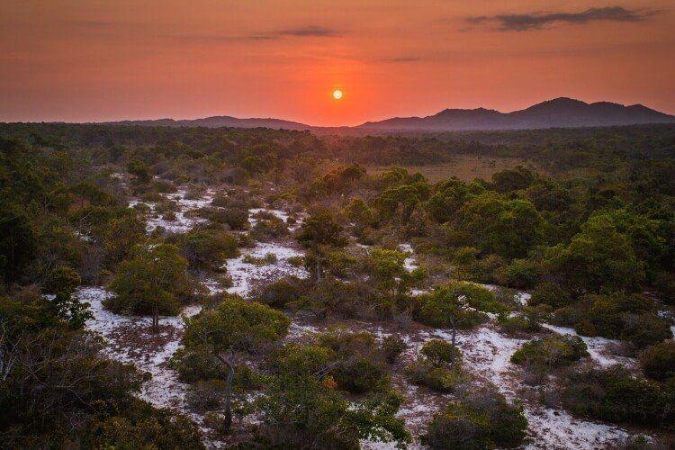 Khu bảo tồn thiên nhiên Nà Hẩu đẹp rực rỡ trong ánh hoàng hôn.