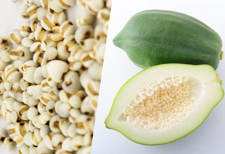 Đu đủ kết hợp với ý dĩ tạo thành một món ăn hỗ trợ điều trị các bệnh về xương khớp hiệu quả.