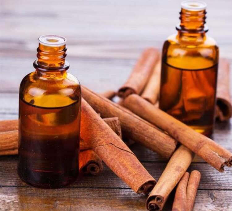 Có rất nhiều tác dụng hữu ích của tinh dầu quế và các sản phẩm làm từ quế.