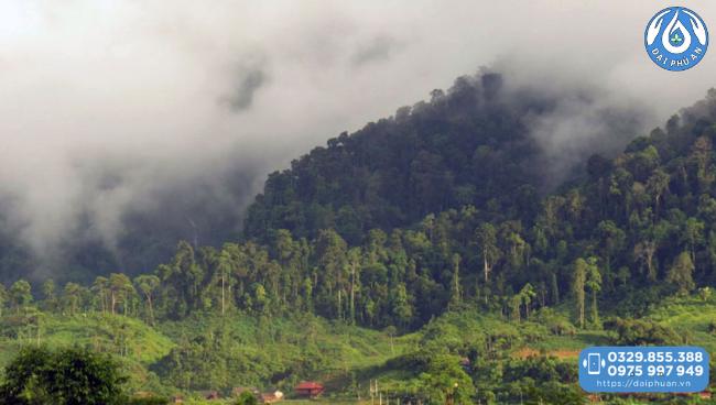 Khu bảo tồn thiên nhiên Nà Hẩu - Yên Bái