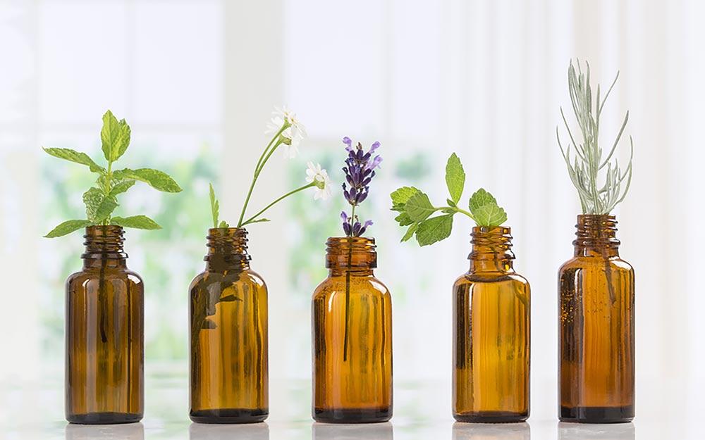 Một số loại tinh dầu có khả năng kháng khuẩn